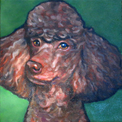 Kiko pet portrait