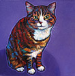 Marv the cat memorial pet portrait from San Diego, CA