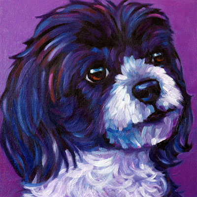 Oreo pet portrait from Alberta, Canada