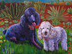 Shylee and Chancey pet portrait, best friends from San Diego CA