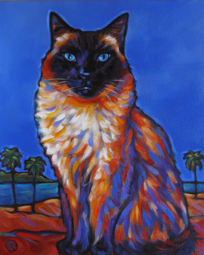 cat pet portrait of Thumper, from San Diego, CA