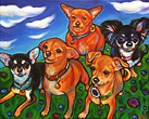 Pet portrait of five happy chihuahuas from Enid, Oklahoma