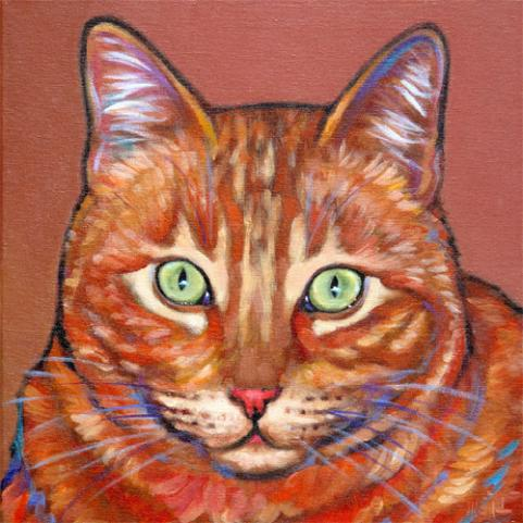 Pet portrait of Johnny, fab feline rescue in San Diego, CA