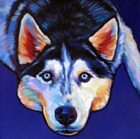 Pet portrait of Norris Siberian Husky