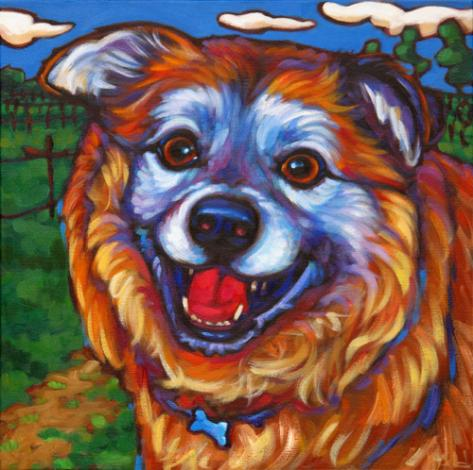 Pet portrait of Rusty, from Sonoma, Ca
