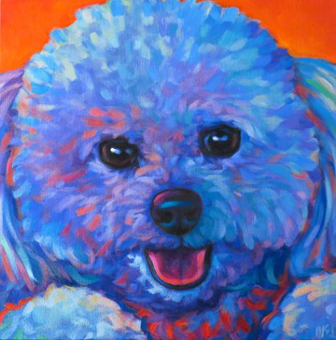 Pet portrait of Snuggles, from La Jolla, CA